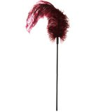 Sportsheets Ostrich Feather Tickler