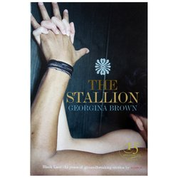 The Stallion - Erotic Book Club Survey