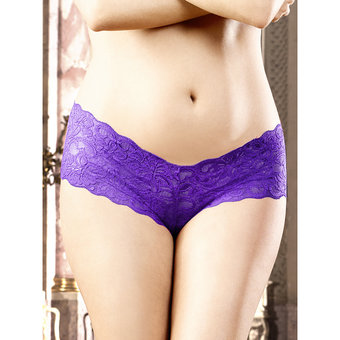 Baci Lingerie Plus Size Lace French Panty