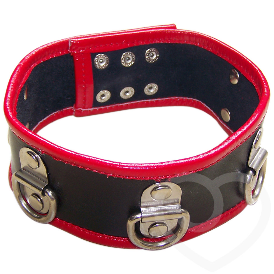 Bondage Boutique Advanced Leather and PVC Multi D-Ring Collar