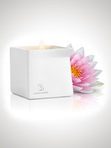 Jimmyjane Afterglow Massage Candle Pink Lotus 128g
