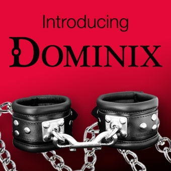Introducing-DOMINIX