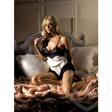 Fantasy Vintage Satin and Lace Teddy