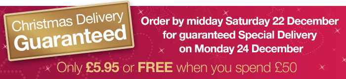 Christmas Delivery Guaranteed at Lovehoney