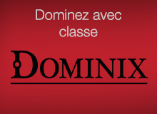 Dominez avec classe - Dominix