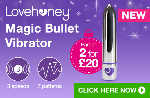 Lovehoney Magic Bullet Vibrator