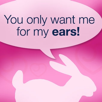 Love rabbit vibrators? It's all about the ears...