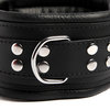 DOMINIX Deluxe Extra Thick Leather Collar
