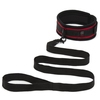 Bondage Boutique Beginners Collar and Lead