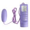 Aqua Silk Massager Vibrating Love Egg