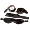 Fetish Fantasy Gold Faux Crocodile Leather Bondage Kit