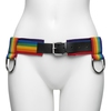 Bondage Boutique Rainbow and Leather Bondage Belt