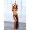 Dreamgirl Gold Belly Dancer Costume