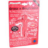 Grow Your Own Boyfriend