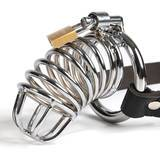 Fetish Fantasy Extreme Chastity Belt and Cock Cage