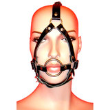 Leather O-Ring Head Harness