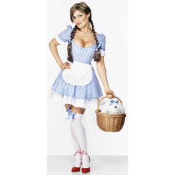 Fever Sexy Dorothy Outfit