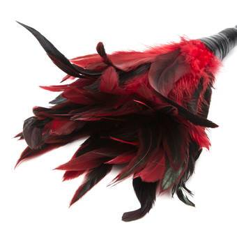 Fetish Fantasy Frisky Red Feather Tickler