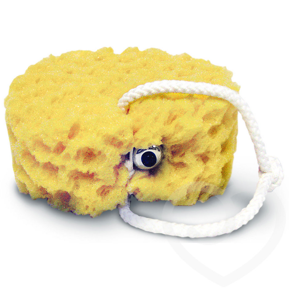 Sex in the Shower Foam Sea Sponge