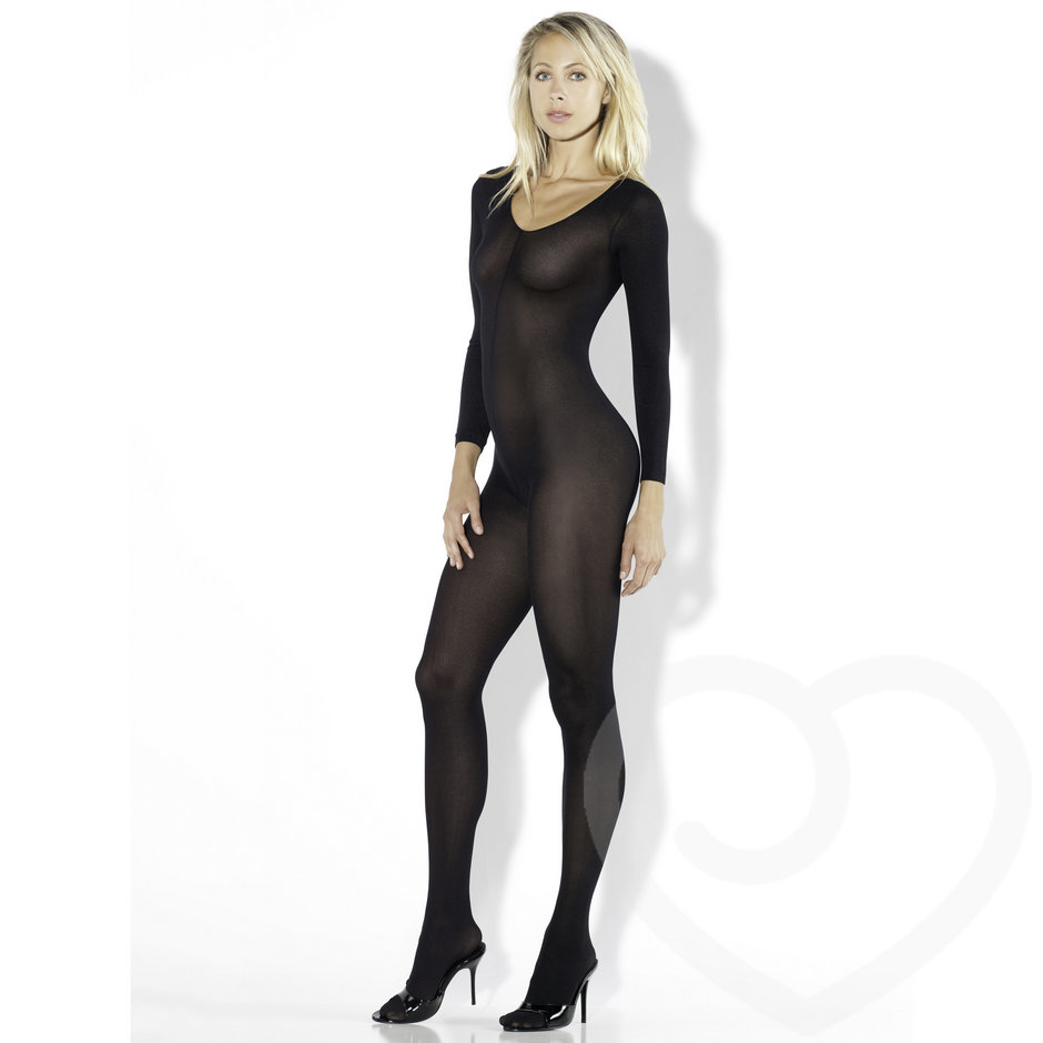 Fantasy Desire Long Sleeved See Through Bodystocking