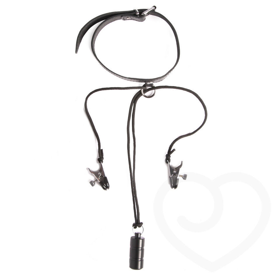 About will bdsm nipple weight clamps very