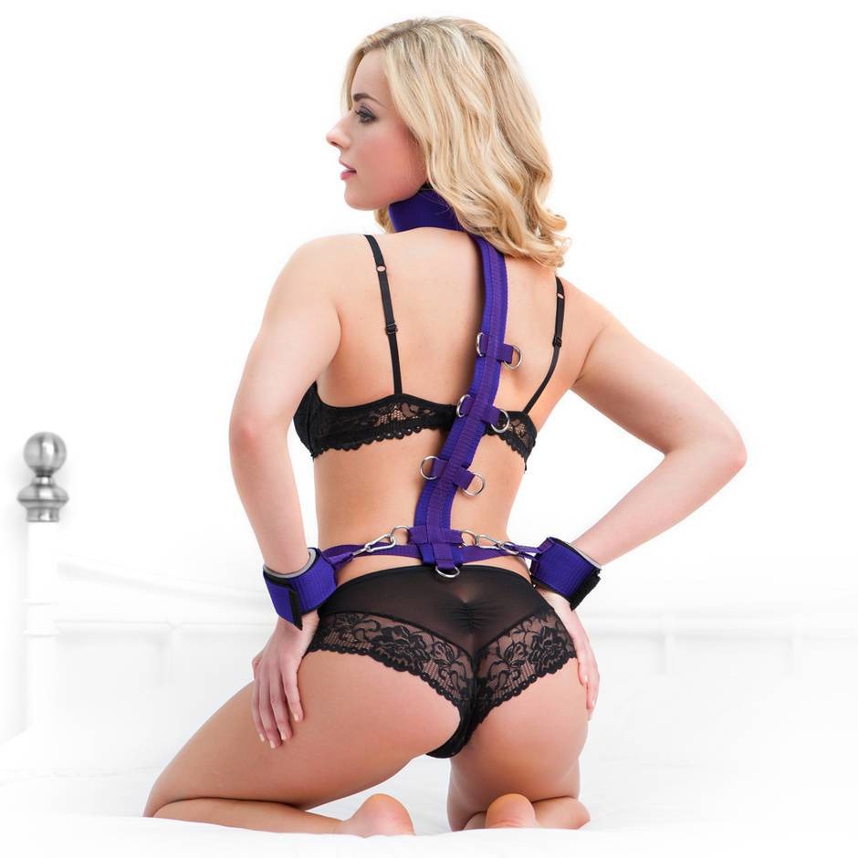 Purple Reins Beginners Restraint Harness