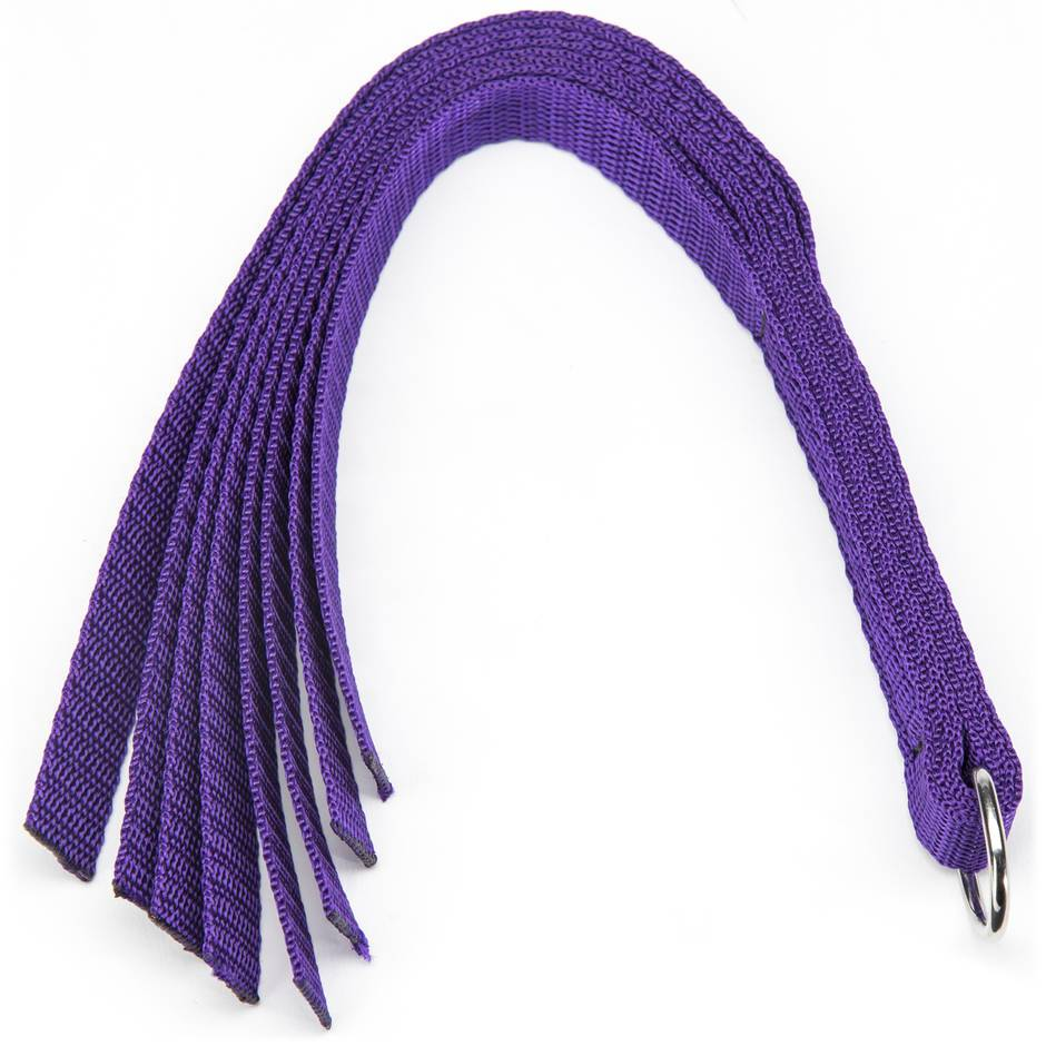 Martinet débutant, Purple Reins