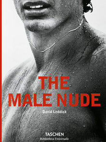 The Male Nude 37518