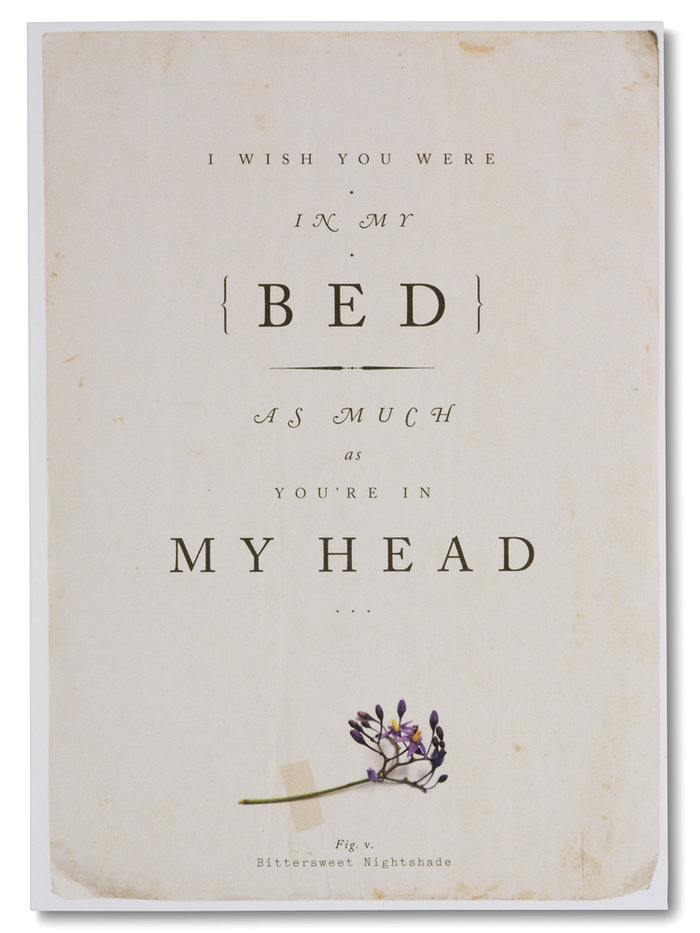 Quite Lovely I Wish You Were In My Bed Greeting Card