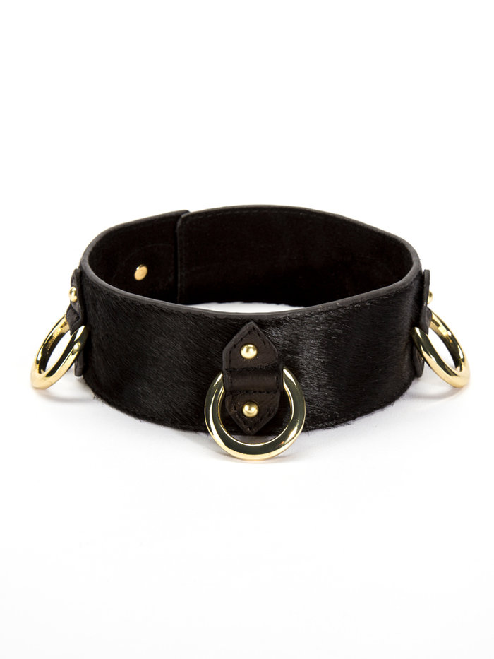 The Model Traitor Pony 3 D-Ring Collar