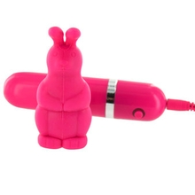 Lovehoney Bedtime 10 Function Bullet Rabbit Vibrator Set