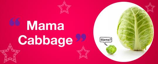 Mama Cabbage