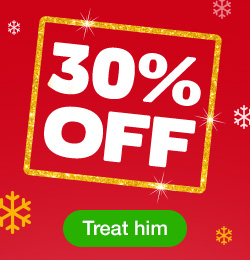 30% off toys for him