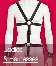 Bodies and Harnesses