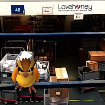 Pidgey in warehouse