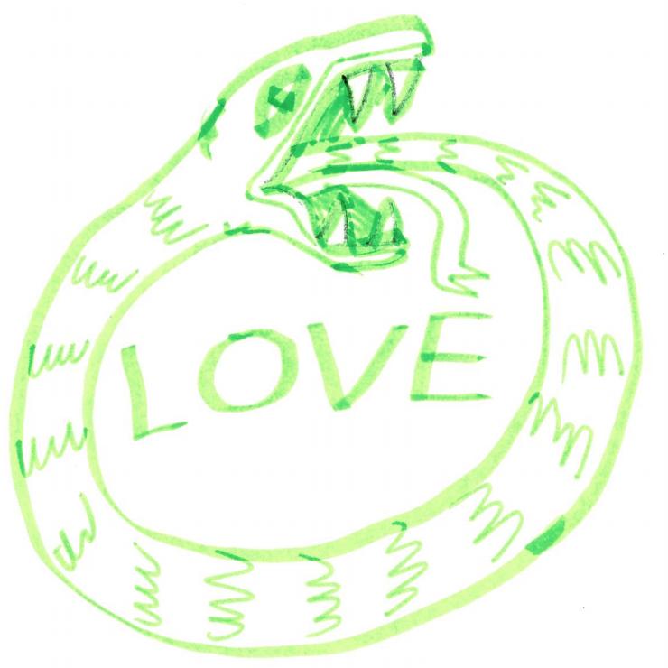 snake-blog