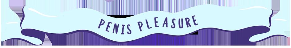 Penis pleasure