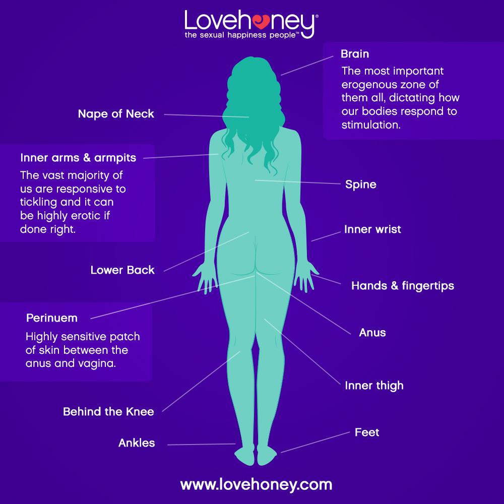 Erogenous Zones Women